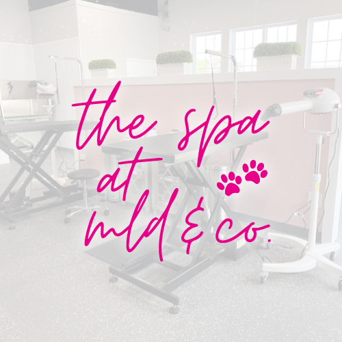 MLD-CO-Spa-Featured